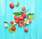 红色的苹果 免版税图库摄影