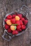 红色的莓果和黄色莓 免版税图库摄影