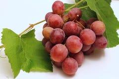 红色的葡萄 库存图片