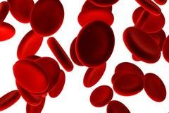 红色的血细胞 库存图片