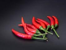 红色的辣椒 库存图片