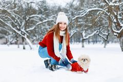 红色的遛美丽的女孩编织了毛线衣在白色s的一条狗 免版税库存图片
