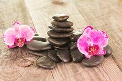 紫红色的蝴蝶兰和黑石头在被风化的甲板 免版税库存照片