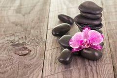 紫红色的蝴蝶兰和黑石头在被风化的甲板 库存图片