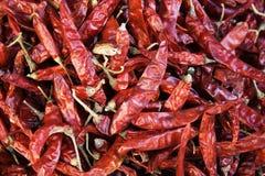 红色的chilis 免版税图库摄影