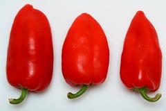 红色的paprikaes 库存照片