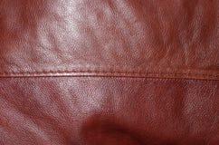 与针的红色皮革 免版税库存照片
