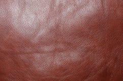 红色皮革 免版税库存图片