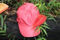 红色盖帽 库存图片