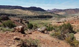 红色石头和洗刷风景在曲拱NP精美曲拱足迹 免版税图库摄影