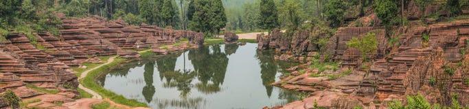 红色石森林 库存照片图片