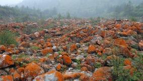 红色石头海滩,贡嘎山 库存照片