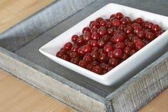 红色碗的无核小葡萄干 库存照片
