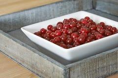 红色碗的无核小葡萄干 免版税图库摄影