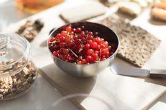 红色碗的无核小葡萄干 免版税库存图片