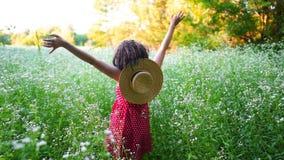 红色礼服和草帽身分的妇女与在绿色领域的开放胳膊 秀丽,自然,旅行,希望,和谐概念 股票视频