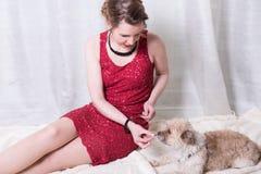 红色礼服哺养的狗的妇女在毯子 图库摄影