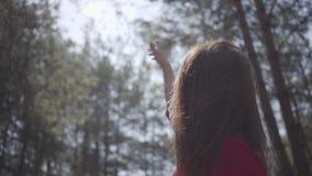 红色礼服的优美的妇女身体在森林夫人举在天空的手 t 影视素材