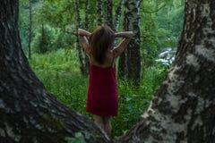 红色礼服的俏丽的女孩在山的一个夏天森林里 免版税库存图片