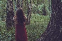 红色礼服的俏丽的女孩在山的一个夏天森林里 图库摄影