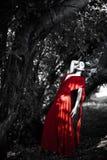红色礼服的妇女在神仙的森林里 免版税图库摄影