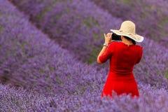 红色礼服的妇女拍摄在的lavander领域 免版税库存照片