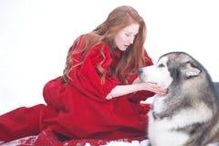 红色礼服的妇女有狗的 有爱斯基摩或爱斯基摩狗的童话女孩 圣诞节 图库摄影