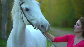红色礼服的年轻浪漫女孩走与白马的反对太阳 与她的公马的妇女车手在秋天 影视素材