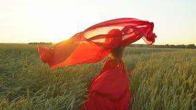 红色礼服的愉快的年轻美丽的妇女有运行在麦田的围巾的在日落夏天,自由健康幸福 股票录像