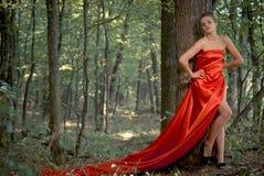 红色礼服的新美丽的妇女在绿色森林 免版税图库摄影