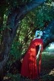 红色礼服的美丽的妇女在神仙的森林里 图库摄影