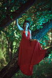 红色礼服的美丽的妇女在神仙的森林里 库存图片