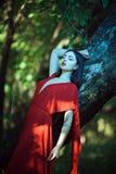 红色礼服的美丽的妇女在神仙的森林里 免版税库存图片