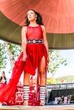 红色礼服 库存图片