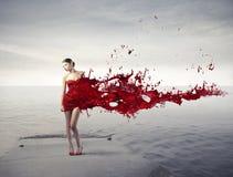 红色秀丽 免版税库存图片