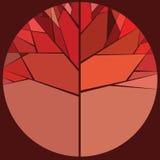 红色秋天树 库存照片