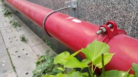 红色管子和绿色植物 库存照片