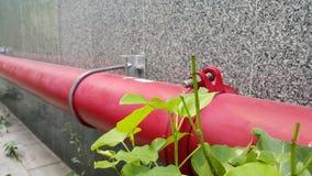 红色管子和绿色植物 库存图片