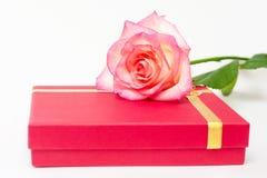 红色箱子和桃红色在白色背景上升了 心爱的一件礼物 免版税库存图片