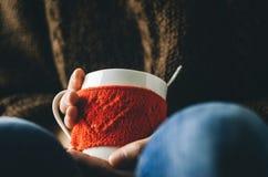 红色编织了有心脏样式的羊毛杯子在女性手上 库存图片