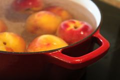 红色罐把柄的特写镜头,当变白桃子时 免版税库存照片