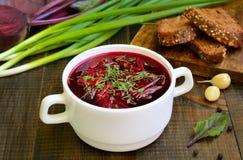 红色罗宋汤汤用在白色碗的莳萝 免版税库存照片
