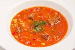 红色罗宋汤用肉 免版税图库摄影