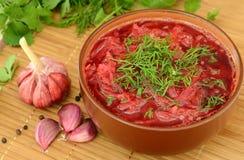 红色罗宋汤用莳萝 库存照片