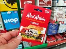 红色罗宾礼品券在手上 免版税库存图片