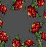红色美丽的兰花 免版税图库摄影