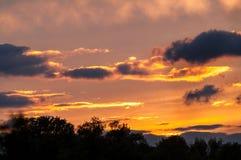 红色美好的日落的森林与云彩 免版税图库摄影