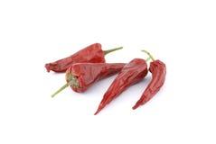 红色老的胡椒 库存照片
