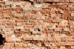 红色老砖墙 库存图片