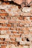 红色老砖墙 免版税库存照片